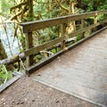 The bridge over Trestle Creek.- Brice Creek Trail, Champion Creek Trailhead to Lund Campground Hike