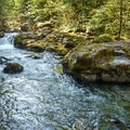 Brice Creek.- Brice Creek Trail, Champion Creek Trailhead to Lund Campground Hike
