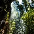 The view from behind Upper Trestle Creek Falls.- Upper Trestle Creek Falls Loop Hike