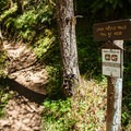 The Upper Trestle Creek Falls Trailhead is 25 yards beyond the Champion Creek Trailhead on FR-22.- Upper Trestle Creek Falls Loop Hike