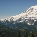 View of Mount Rainier (14,409') from the summit of Bachelor's Ridge.- Dewey + Anderson Lakes