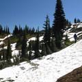- Tipsoo Lake + Naches Peak Loop Trail