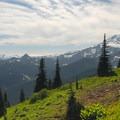 View toward Mount Rainier (14,409') and down toward the Chinook Creek Valley.- Tipsoo Lake + Naches Peak Loop Trail