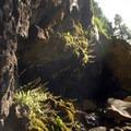 - Hedge Creek Falls