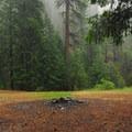 Cabin Creek Campsites.- Cabin Creek Campsites