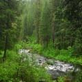 - McCloud River Three Falls Hike