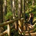 Lena Lake Trail.- Lena Lake Hike
