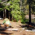 Lena Lake campsites.- Lena Lake Hike