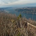 A winter view down the Columbia River Gorge from Angel's Rest.- Angels Rest + Foxglove Way Hike