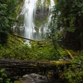 Lower Proxy Falls.- Proxy Falls Hiking Loop