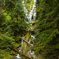 Upper Proxy Falls.- Proxy Falls Hiking Loop