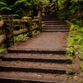 The walkway leading to the Sahalie Falls viewpoint.- Sahalie Falls