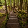 The trail between Sahalie and Koosah Falls.- Sahalie Falls