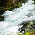 The McKenzie River thrashes down from Sahalie to Koosah Falls.- Sahalie Falls