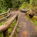 The trail to the falls viewpoint is gradual and accessible.- Koosah Falls