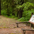 A small day use area.- Olallie Campground