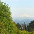 The view east toward Mount Hood (11,250').- Council Crest Park