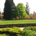 Council Crest Park.- Council Crest Park
