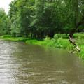 The park along Butte Creek.- Scotts Mills County Park