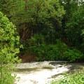 Butte Creek below Scotts Mills Falls.- Scotts Mills County Park