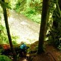Steep trail down to Abiqua Creek.- Abiqua Falls