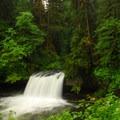 Upper Butte Creek Falls.- Butte Creek Falls Hike