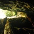 Cavern behind Upper Butte Creek Falls.- Butte Creek Falls Hike