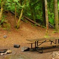 A typical campsite.- Butte Creek Campground