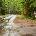 The entrance to Limberlost Campground off of Highway 242.- Limberlost Campground