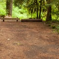 A typical site.- Limberlost Campground