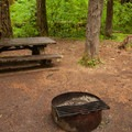 Walk-in sites 1 and 2 should really be considered a single group site.- Limberlost Campground