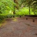 - Limberlost Campground