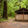 The vault toilets at Limberlost Campground.- Limberlost Campground