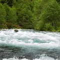 Fish Ladder, Class III, is the only major named rapid on the stretch.- McKenzie River: Olallie to Paradise
