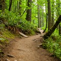 The trail gets plenty of use, but volunteer efforts keep it well maintained.- Spencer Butte Hike