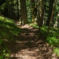 The steep trail down the west side.- Spencer Butte Hike