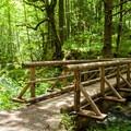 The bridge across Gorton Creek.- Gorge Trail #400 Hike