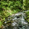 Gorton Creek.- Gorge Trail #400 Hike