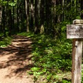The junction with the Gorton Creek Trail.- Gorge Trail #400 Hike