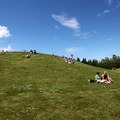 Picnics and sun tanning at Gas Works Park.- Gas Works Park