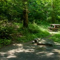 A typical campsite.- Eagle Creek Campground