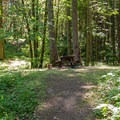 A typical campsite.- Herman Creek Campground