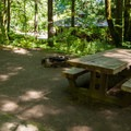 A typical campsite.- Wyeth Campground
