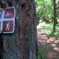 Hiking only.- Mount Defiance Hike