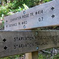Two options to reach the summit.- Mount Defiance Hike