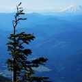 View to Mount St. Helens (8,366') at higher elevation.- Mount Defiance Hike
