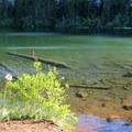 Warren Lake.- Mount Defiance Hike