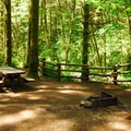 One of the 14 walk-in campsites.- Elk Creek Campground