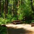 Walk-in campsite.- Jones Creek Campground