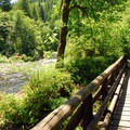 Wilson River Trail heading toward Tillamook Forest Center with a bridge over Jones Creek.- Jones Creek Campground
